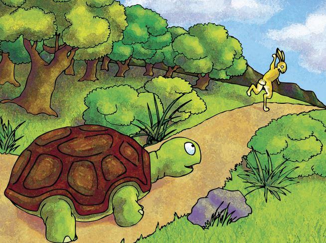 Tortoise & Hare new version