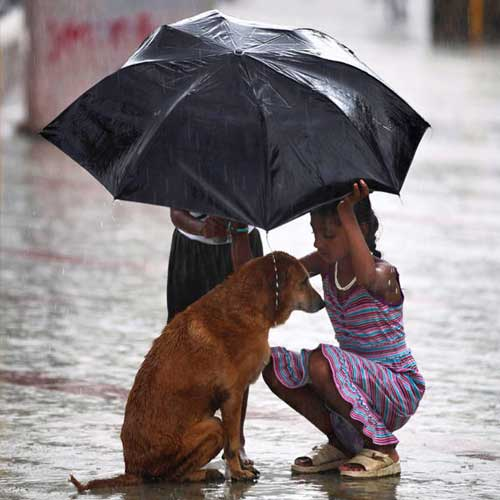 rain lover,monsoon,rain,pakodas,coffee,soothing sound of rain,music to your ears,romance,smell,fresh and green,cozy with a book,love puddles,paper boats, water splash,heaven,beautiful rainbow,frosted window panes,mysterious dark gray clouds,first downpour