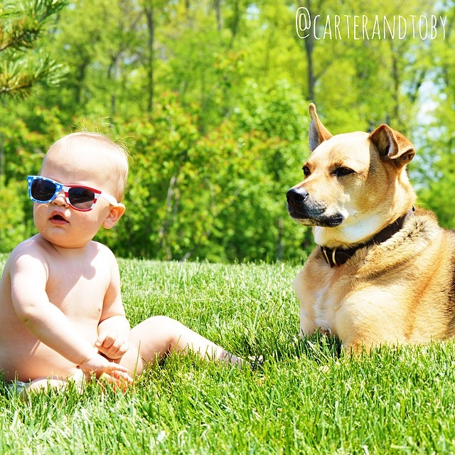 Rescue dog,cute baby,a real-life teddy bear ,affectionate and loving pup,Little Carter,Toby, a rescue dog, is sweet and affectionate ,pair are undoubtedly best friends,pretty much inseparable