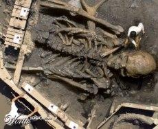 biggest human skeleton, human skeleton