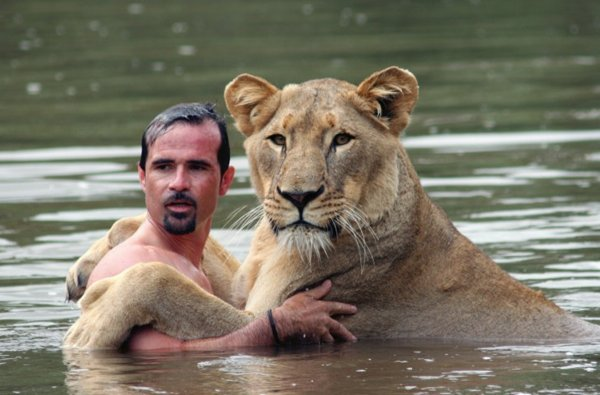 men with lions, Kevin Richardson, animal behavior, playing with lions, lion