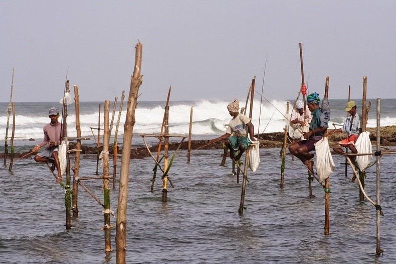 The Stilt Fishermen Of Sri Lanka Reckon Talk