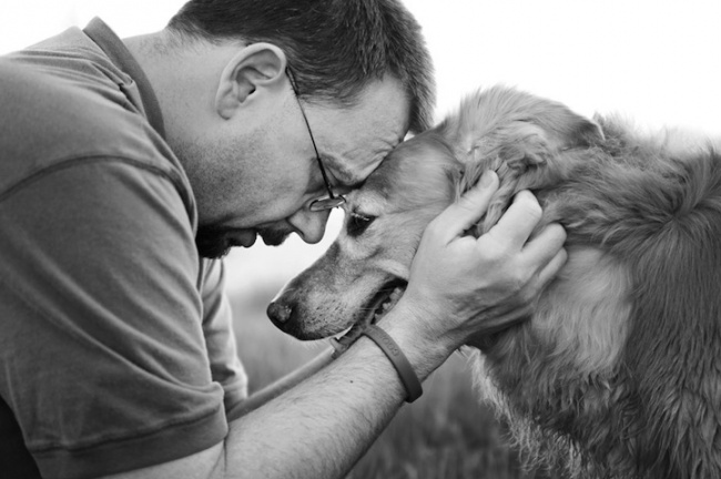 dog, human & dog, photos, animal, men with dog, love, photographs, dog with owner, cute, sweet, lol