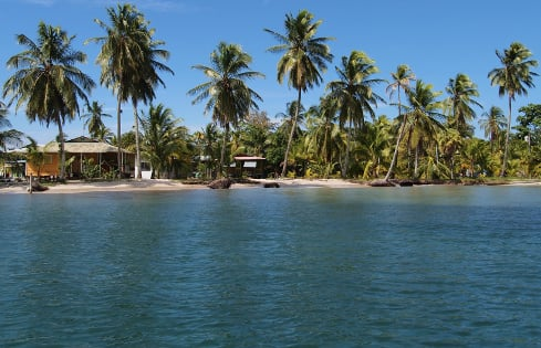 Tropical beach with typical Caribbean houses under coconut trees