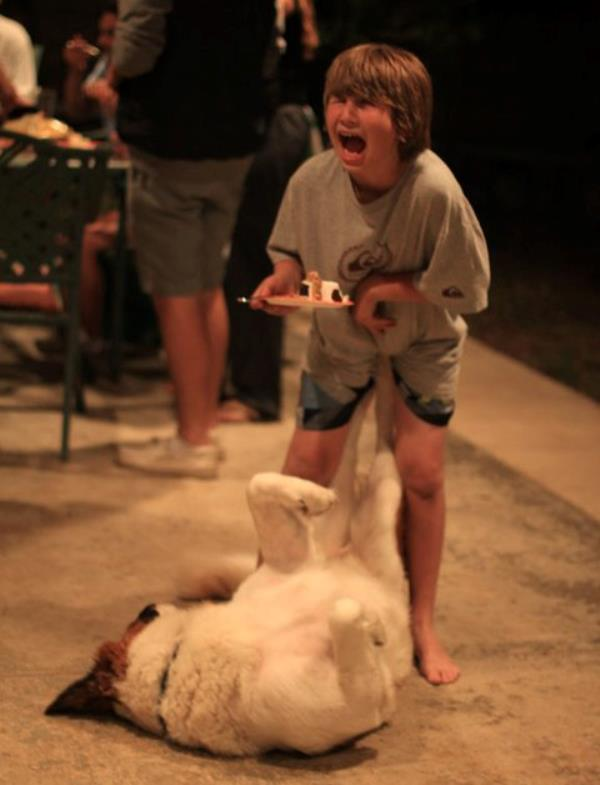 dog-kick
