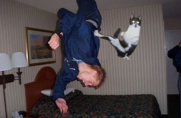 perfectly timed hilarious photos