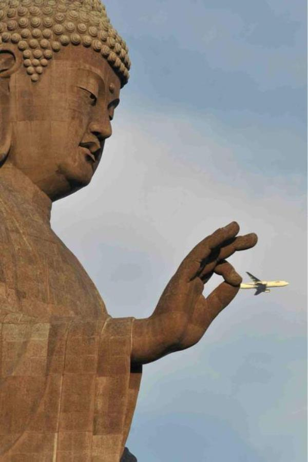 perfectly-timed-photos-airplane