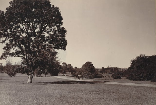 Cubbon Park, Bangalore taken in the 1890s