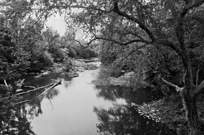 The vrishabhavathi river in 1965