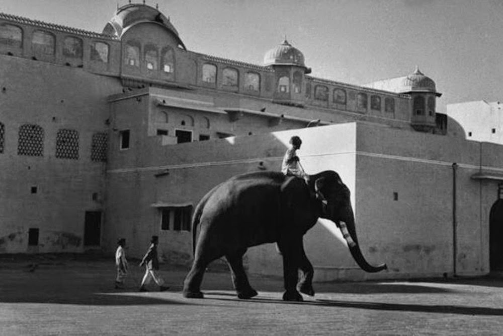Elephant in front of Jaipur Palace - Rajasthan, India 1956