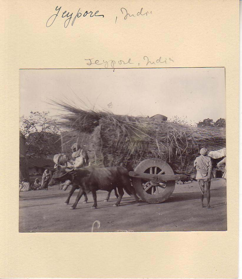 an ox-cart passing by