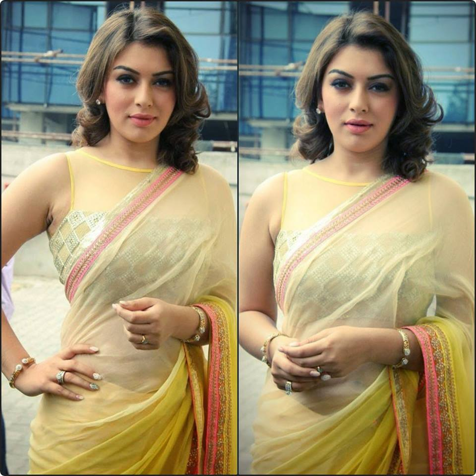 Hansika Motwani Hot photo (14)