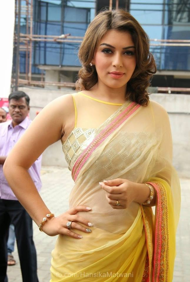 Hansika Motwani Hot photo (7)