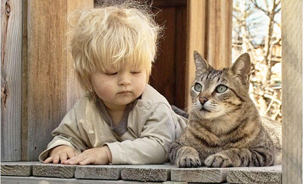 baby, babies, cat with kids, cat with baby, cat, animal, awesome, cool, omg, sweet, cuttest cat, cat photo, cat images