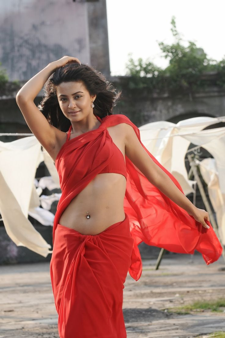 Surveen Chawla Hot photo (13)