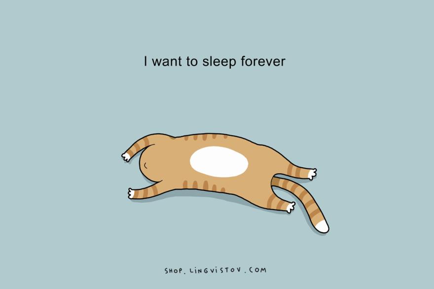 Sleep, Bed, pillow, doodle, love to sleep, gud nite, beauty sleep, nap, snoozing, hobby, favourite, funny, lol, wtf