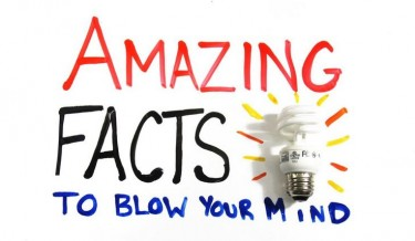 facts, brain facts, mind blowing, human body, Weird Science, amazing, interesting facts, fun facts