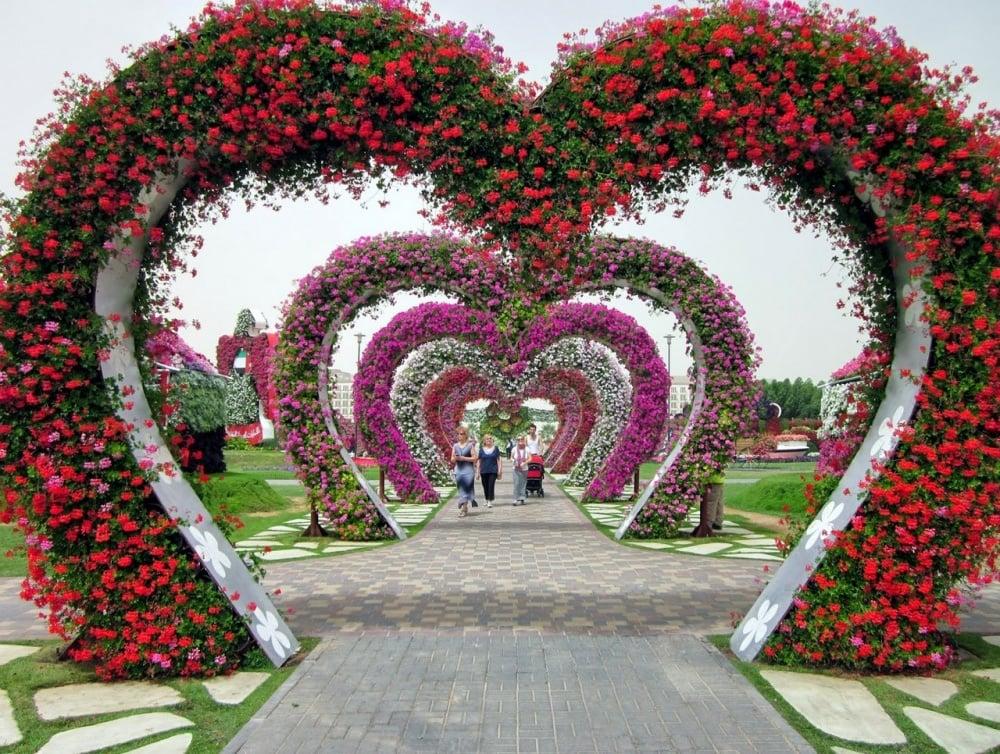 dubai garden 3