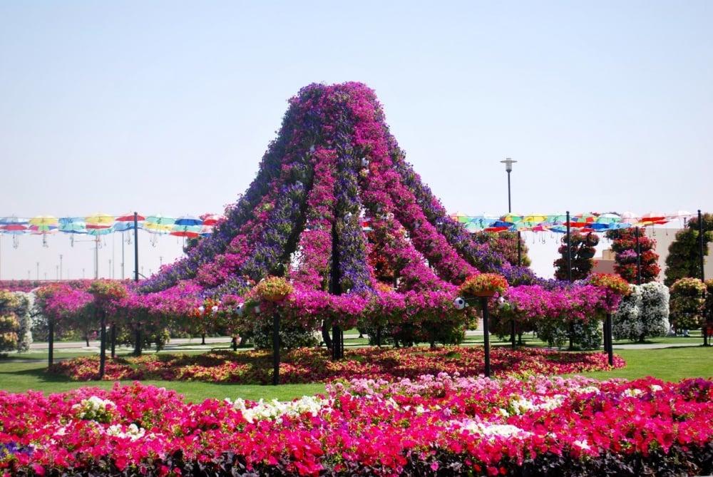 dubai garden 7