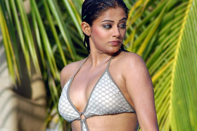 Priyamani Hot, Sexy, Cute Photos | 20 Pics Of South Indian Tamil Telugu  Actress