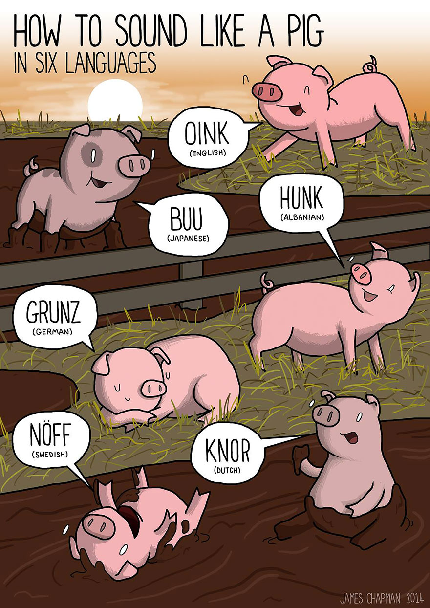pig growl in different languages
