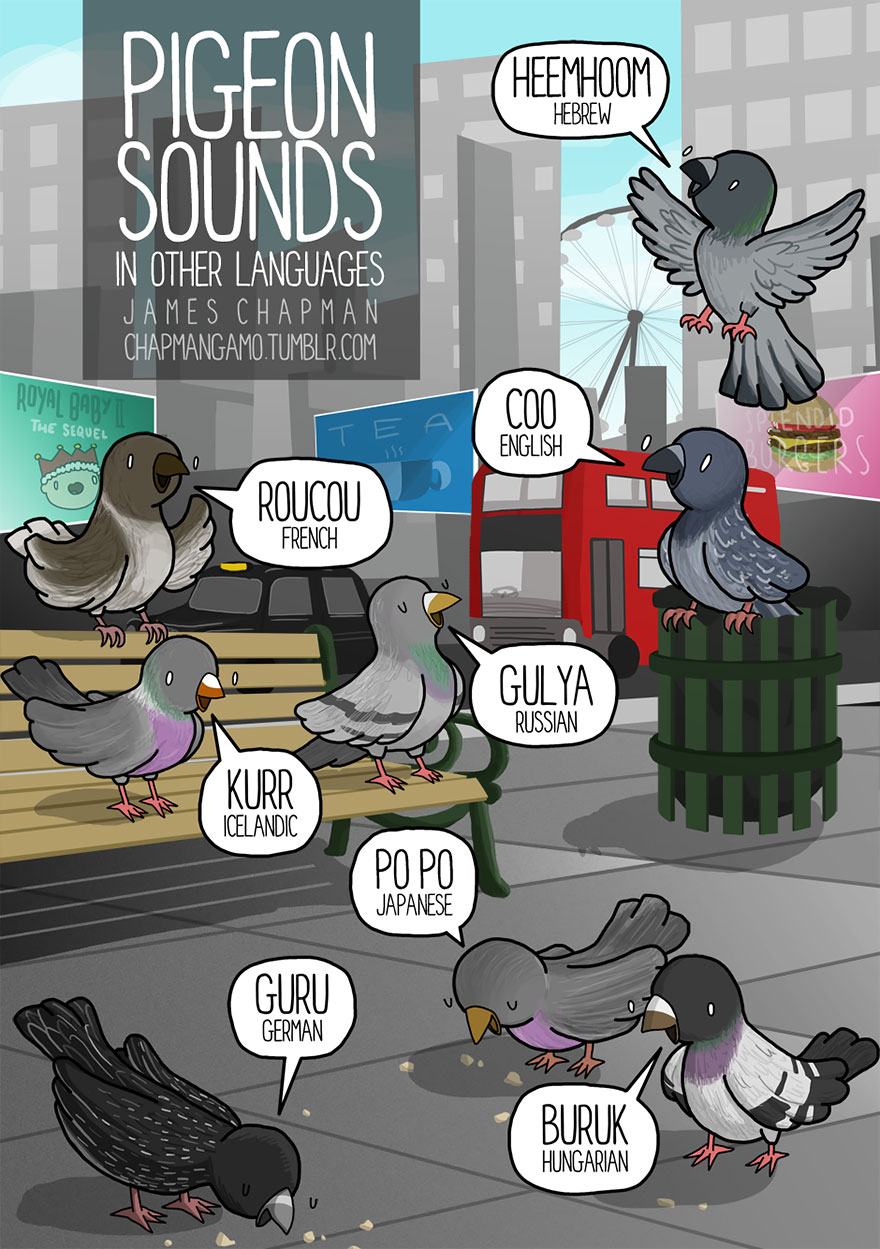 sound of bird chirp in different languages