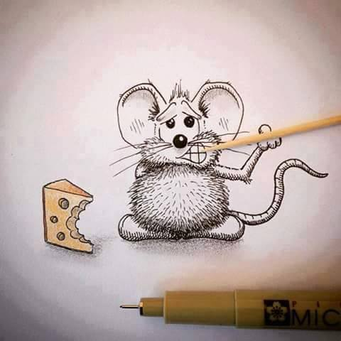funny, lol, amazing, awsome, cute, wow, funny illustrations, cute illustrations, lovely illustrations, cute mice, cute rat, animal, rat, sweet, creative, idea
