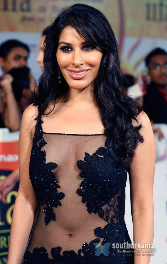 bollywood , wallpappers , south indian actress , celebrity , hot, photoshoot , tollywood, Sophie Choudry, Sophie Choudhary