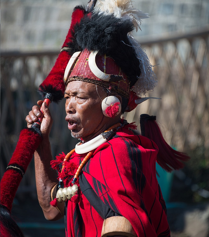 15 Extraordinary Photos Of Indian Naga Tribes | Hornbill Festival