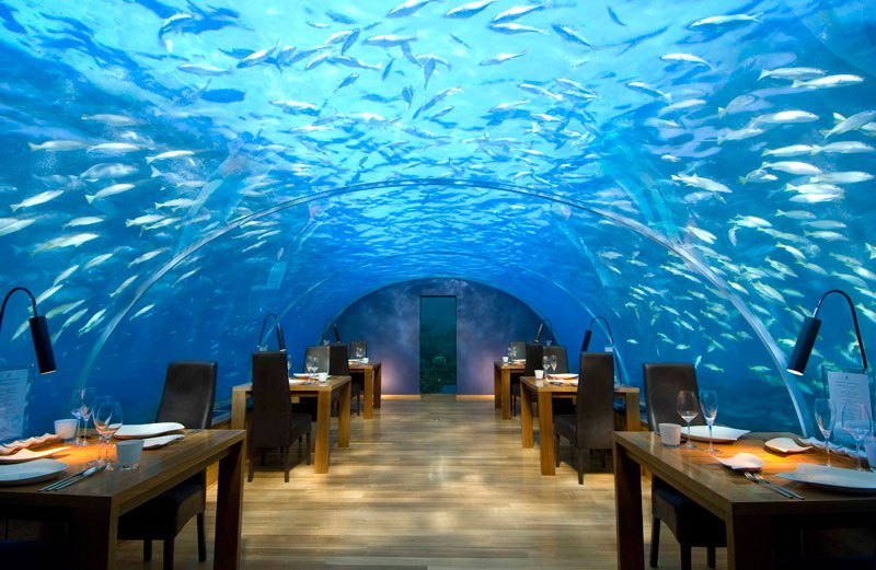 hotel, restaurant, amazing, awesome, wow, mindblowing, extraordinary, unique, great, unique surroundings, under the sea, high in the sky, rock, mountain,  memorable dining experience