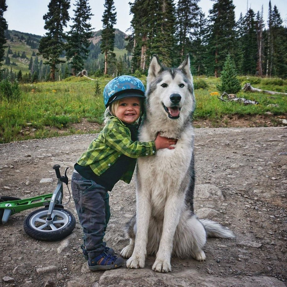 dog, nature, photography, loki, wolfdog, kelly lund, animal, puppy, pet, Instagram, Facebook account, dog owner, extremely photogenic, cute, wow, adorable, great, amazing, awesome, pup, adventures, travel, travelling, photographer, companion, best buddy, best friend, epic