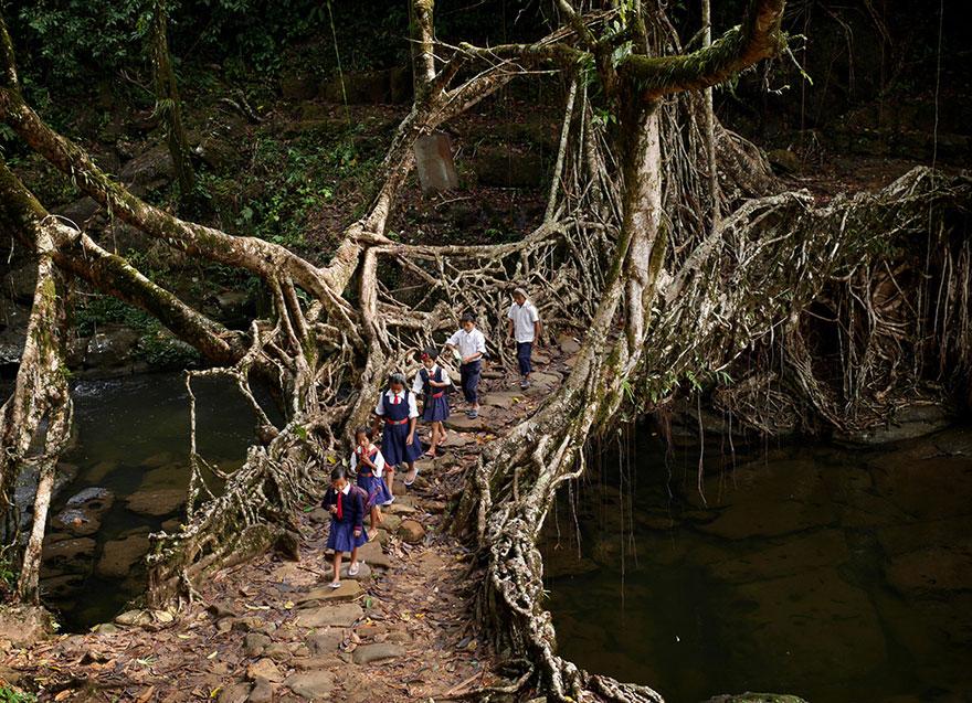 dangerous, school, weird, photography, amazing, dangerous journey to school, asia, india school children, indonesia school, china school, colombia, african