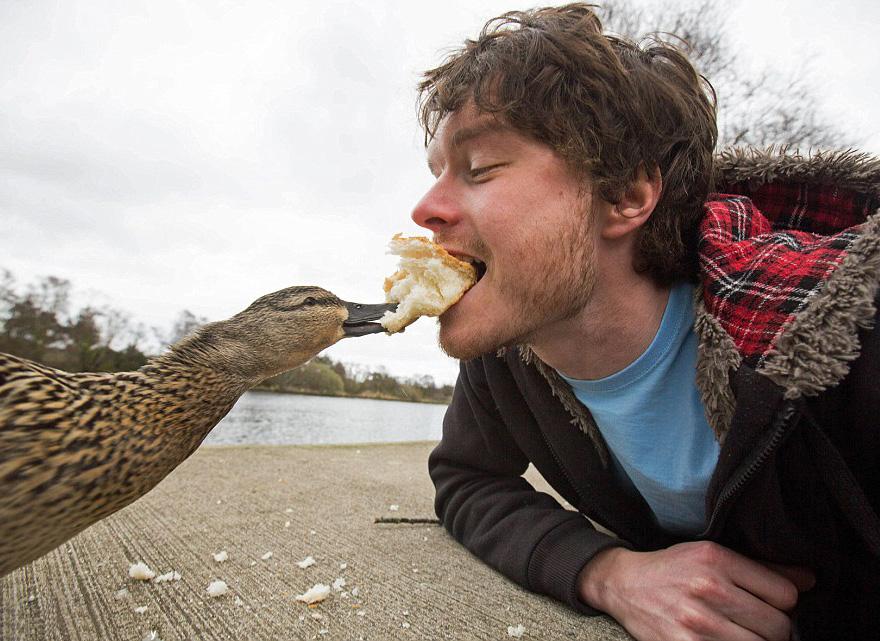 allan dixon, selfie, animal selfie, viral, dr. dolittle, selfies with wild animals, ireland, photographer, adventurer, traveller, amazing photos, #daxonsanimalselfies, instagram
