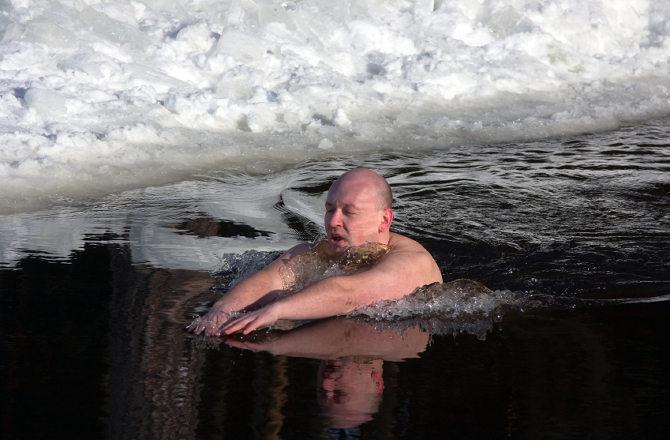 Frozen Trunks (Siberia)