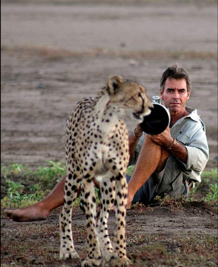 kim wolhuter, kim wolhuter photo, wildlife, photographer, photography, cheetah, selfie with animals, national geographic photo, discovery photo, most daring photographer, filmmaker, botswana, africa