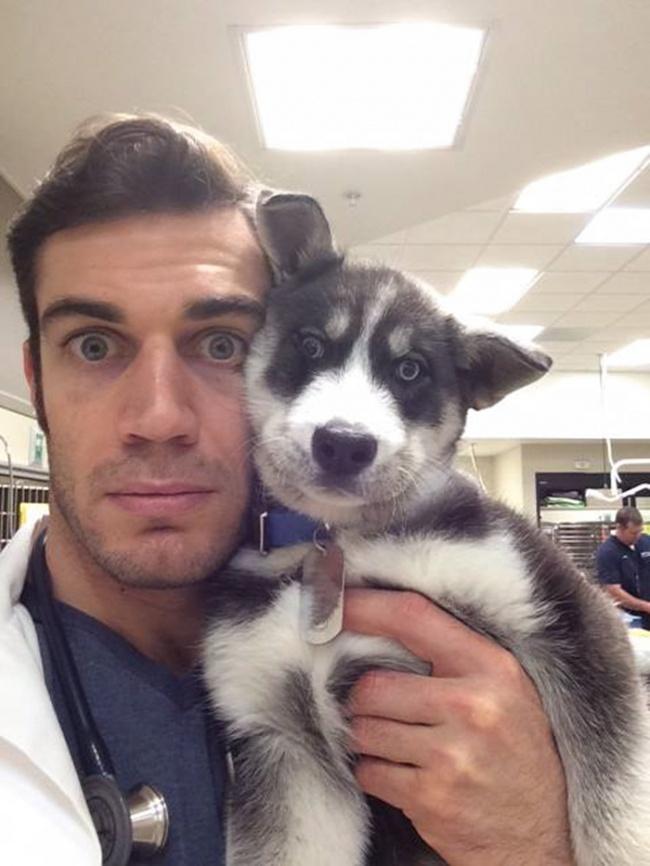 evan antin, california, viral, hottest animal doctor, world's sexiest vet, evan antin photo, amazing, pet doctor