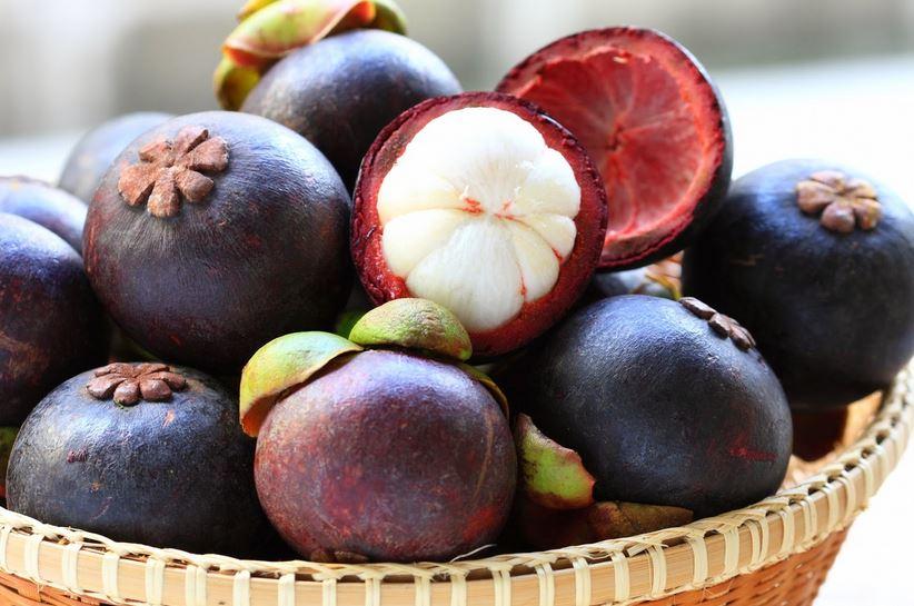 mangosteen, kokum ke fayde,benefits of mangosteen,benefits,mangosteen skin benefits,health facts,mangosteen benefit for health,health,health benefits, kokum health benefits, kokum benefits