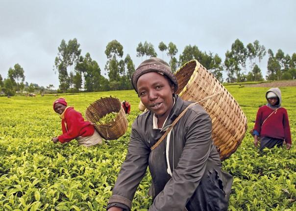 kenya, kenya facts, kenya people, kenya photo, africa, kenya tourism, sexy kenyan, kenyan culture