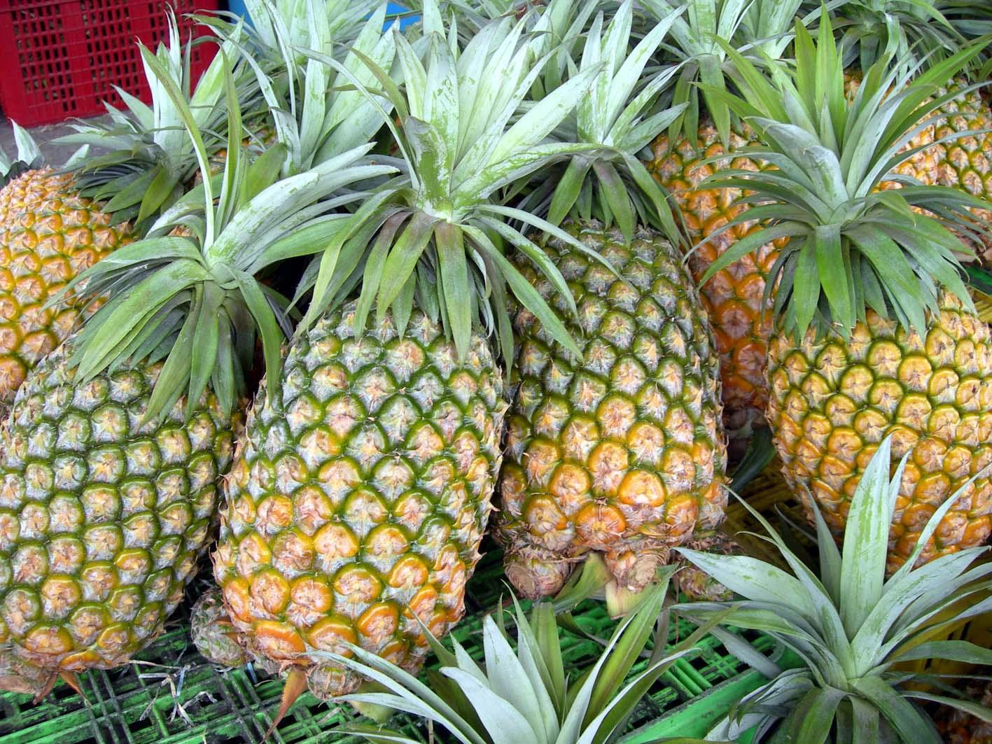 ananas , ananas ke fayde,benefits of pineapple , benefits,pineapple health benefits,health facts,pineapple benefit for health,health,health benefits, pineapple health benefits, pineapple benefits