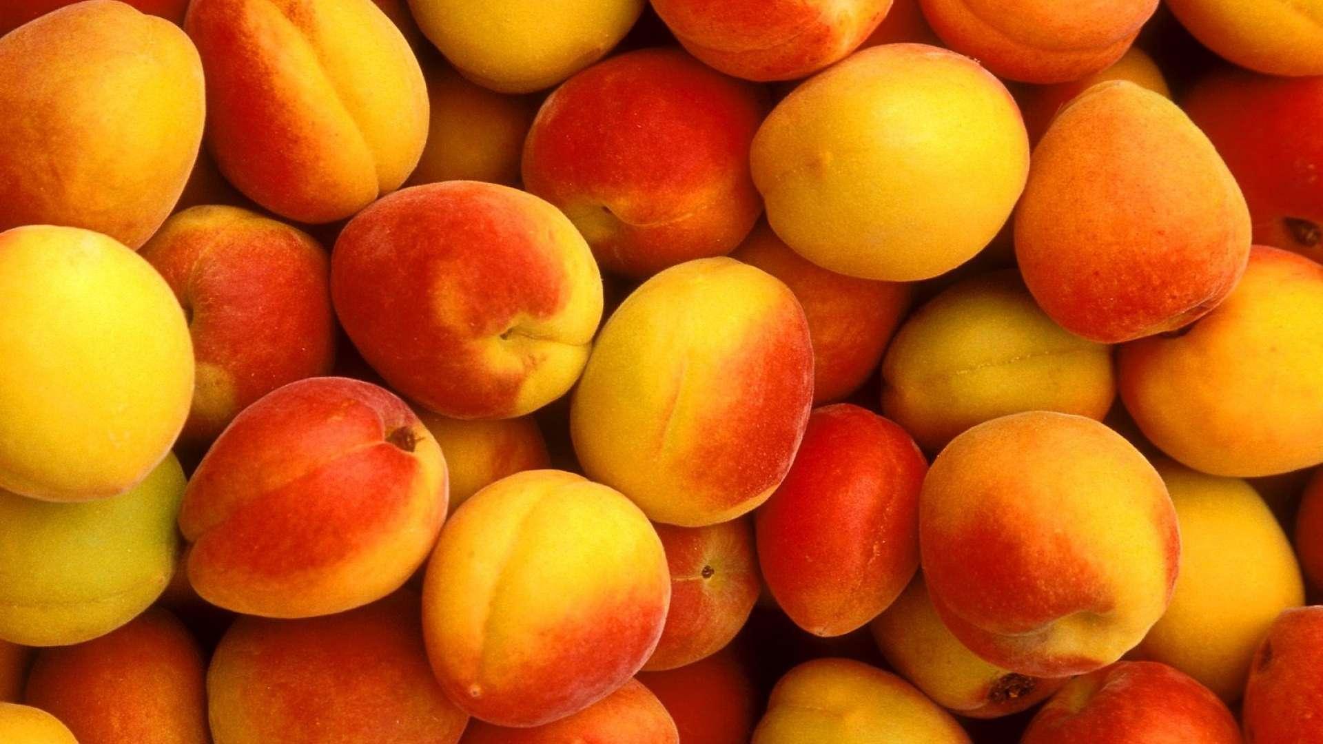 khubani , khubani ke fayde,benefits of apricot , benefits,apricot health benefits,health facts,apricot benefit for health,health,health benefits, apricot health benefits, apricot benefits