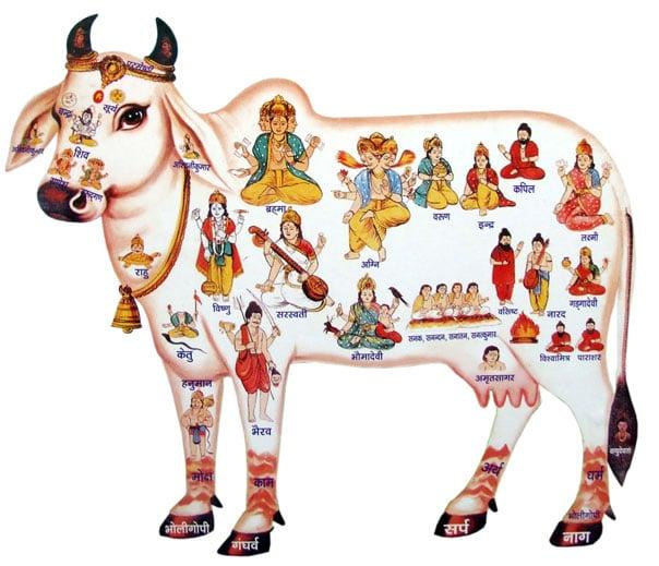 samudra manthan , samudra manthan story , samudra manthan hindi story, amrit mathan , kumbh mela, hindu dharma , pauranik kathaye, hindu mythology, hindu mythology in hindi, 14 ratna , ratna during samudra manthan , focus on your goals, hindu mythology, hinduism, management lesson from indian mythology,