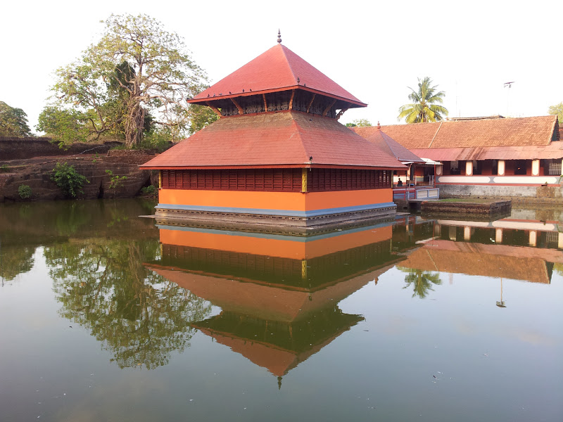 unknown facts, amazing facts, babia, babia crocodile, crocodile, babiya crocodile, vegeterian crocodile, ananthapura lake temple,ananthapura lake temple facts, kerela temple, kerelas only lake temple, temple, hinduism, hindu, hindu temple, india facts, india,crocodile facts, kasaragod, kasaragod facts, kasaragod temple,ananthapadmanabha Swami,ananthapadmanabha Swami temple ,padmanabhaswamy temple,padmanabhaswamy temple facts