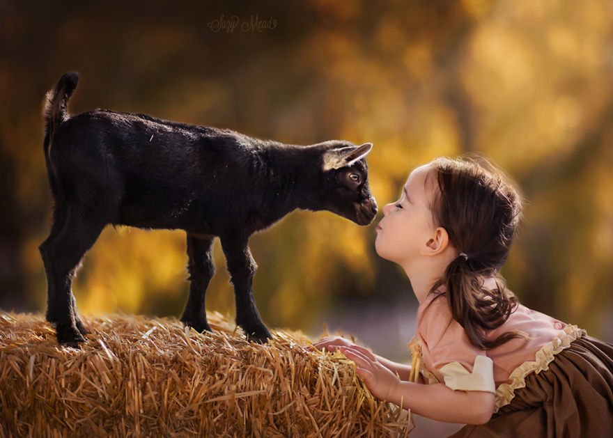 Art Child Kids Pets Photography Cute Adorable Funny Animal Photos