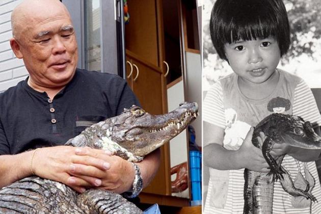 japan, japanese, bizarre, animal friendship, pet caiman, pet alligator, pet crocodiles, kure city, caiman facts, reptiles