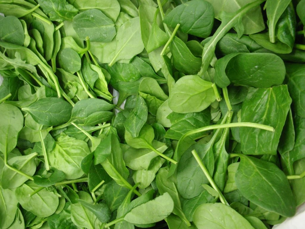 benefits of spinach ,spinach health benefits,spinach benefits,benefits,spinach skin benefits,spinach nutrition,palak ke fayde, palak ki sabzi,palak ke side effects