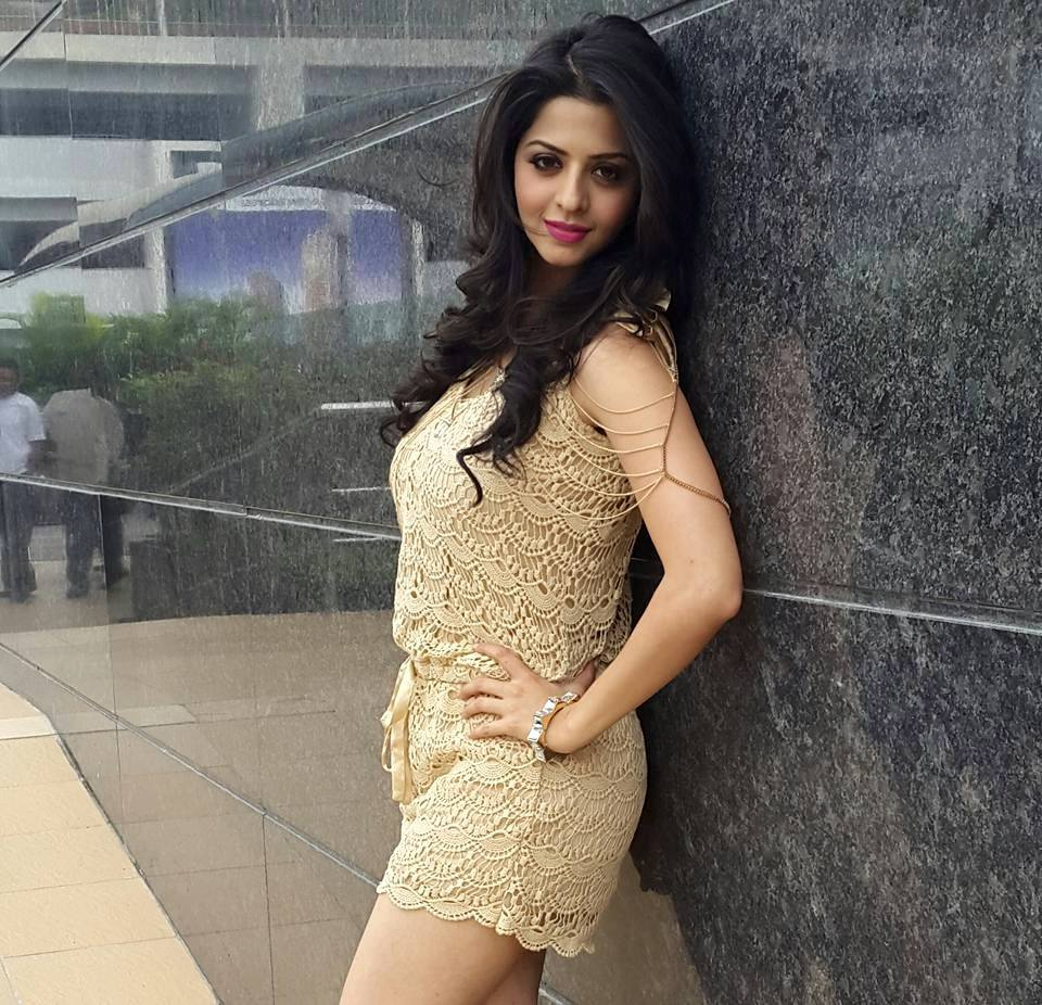 15 hot & sexy photo's of vedhika | tamil movie actress | reckon talk