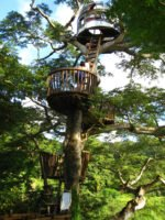 Top 30+ amazing TreeHouses architecture resort , hotels around the world