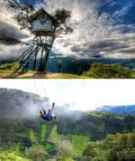 Top 30+ amazing TreeHouses architecture around the world