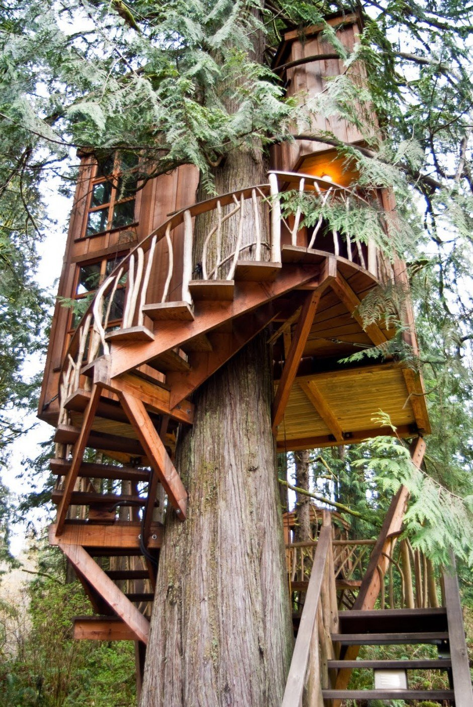 World S Most Popular Treehouses Resort Hotels With