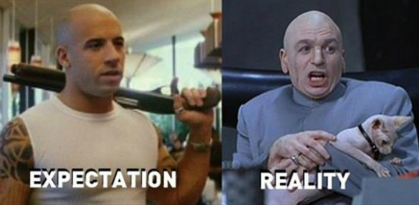 funny, viral, troll, trending, expectations vs reality, lol
